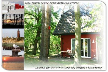 Ferienwohnung Kiefer - Haus Waldblick